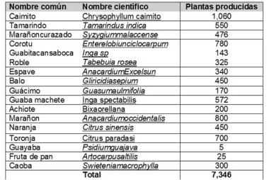 PlantacionSAVIM