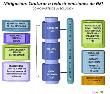 MitigacionCambioClimatico_FAO